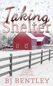 Taking Shelter ebook cover